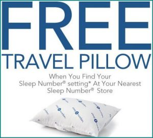 free sleep number travel pillow 300x272 Free Sleep Number Pillow