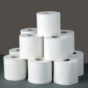 toilet paper stack 300x300 Charmin Basic Toilet Paper only $0.25 per roll at Staples!