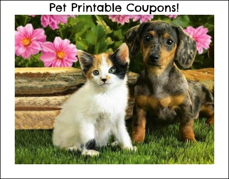photo about Printable Pet Coupons named Pet dog Materials Printable Discount coupons: Pedigree, Purina and much more