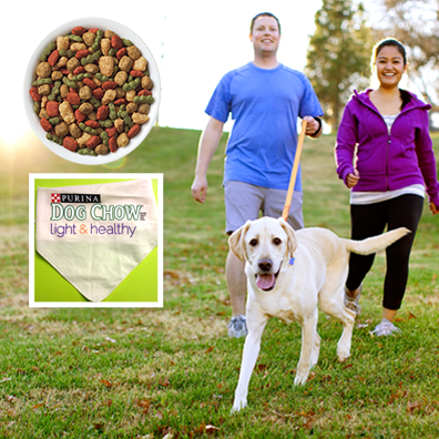 purina2 Free Purina Dog Chow 5 oz. Sample Plus Free Dog Bandana