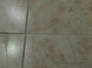 grout41 300x224 Clean your Grout with Lemon Juice!
