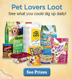 pet Purina Summer Treasure Instant Win Game!