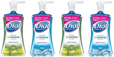 Dial Complete Foaming Hand Wash Just $0.12/Each!