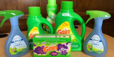 Sale on Gain Products at Dollar General just $0.88/Each!